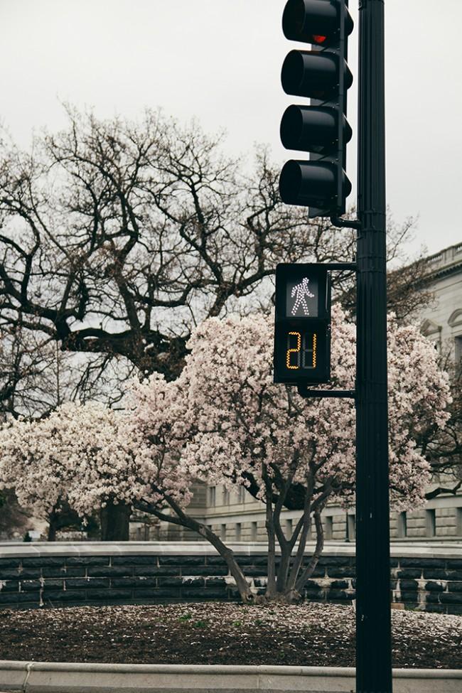 Washington016